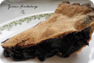 Growing Garden Huckleberries (and a pie filling recipe)